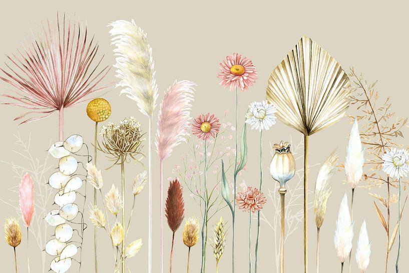 Getrocknete Blumen Pampasgräser von Geertje Burgers