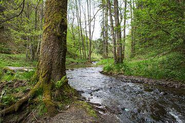 Rivier de Ourthe stroomt door bos in de Ardennen, België van Ger Beekes