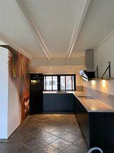 Klantfoto: Portret Schotse Hooglander 2 van Sandra van Kampen, als behang