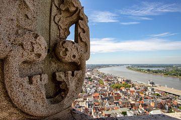 Uitzicht vanaf Kathedraal Antwerpen: Schelde van Martijn Mureau