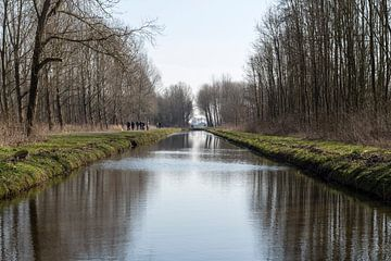 Water in het Purmerbos, Purmerend van Jaap Mulder