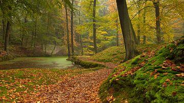 landgoederenroute von Michiel Mos