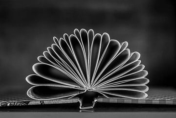 Een boek - origami van Norbert Sülzner