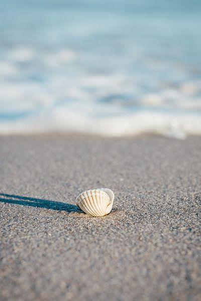 L'île de Rügen, sur la plage de la mer Baltique sur Mirko Boy
