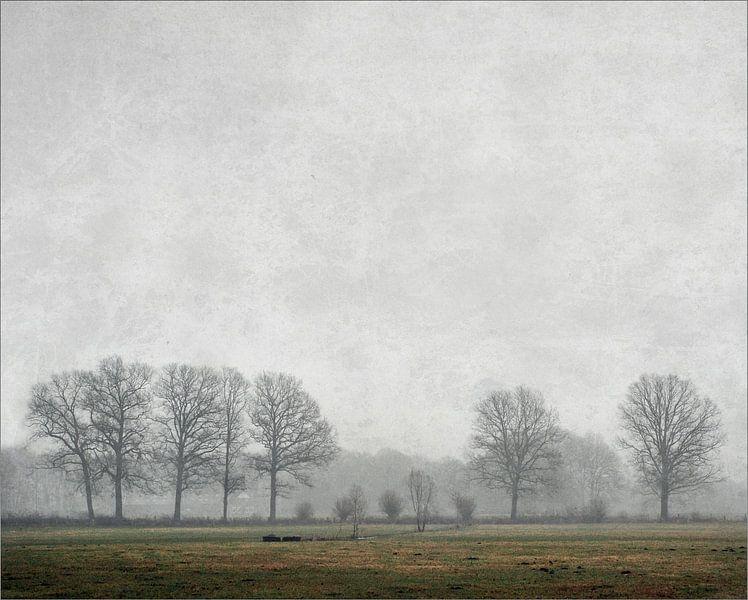 All is quiet von Jenny de Groot