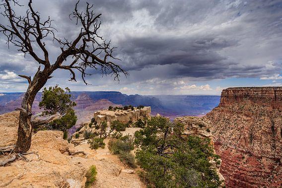 Grand Canyon National Park van Bart van Dinten