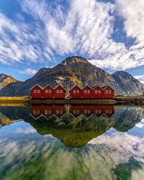 A Norwegian mirror von Niels Tichelaar
