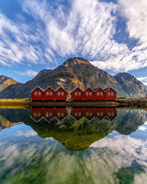 A Norwegian mirror van Niels Tichelaar