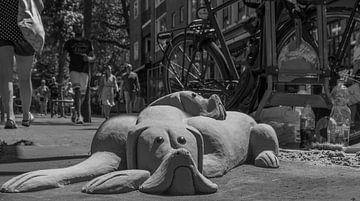 Sand dogs von Waldo Kranenburg
