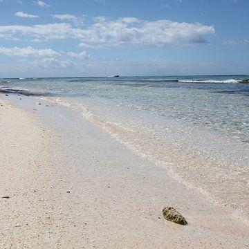 Isla Saona Sandstrand von Christine aka stine1