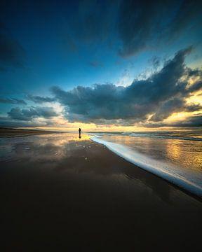 Beachwalker - Strandwandelaar