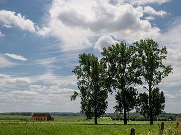 Landelijk groen in het Pajottenland von Ronald De Neve