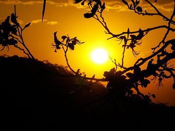 Brasil sunset van Peter Leenen