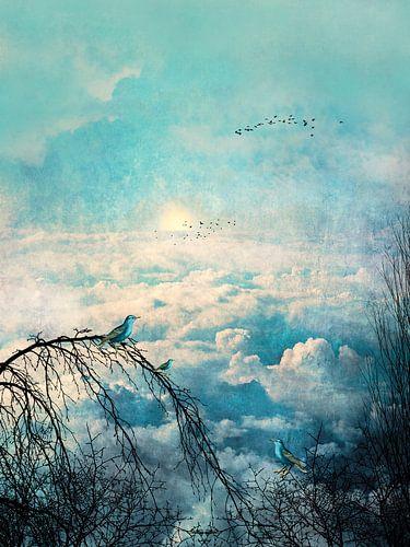 HEAVENLY BIRDS III-B Portrait van