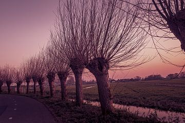 Polderlandschaft bei Sonnenuntergang von Oscar Limahelu