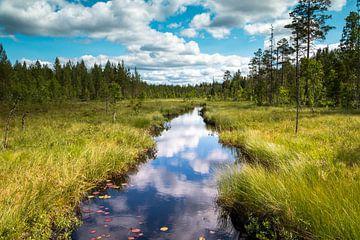 Prachtig riviertje in Zweden provincie Dalarna van Henk Hulshof
