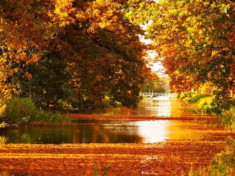 Apeldoorns kanaal in herfstkleuren van Jessica Berendsen