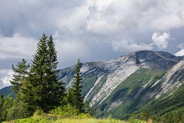 Mountains in Norway van