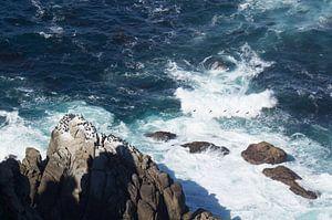 Uiterste zuidpunt van Afrika bij Kaap Punt.