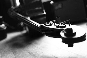 Cello van Nouchka Est