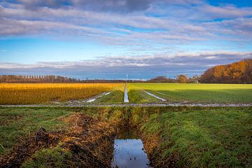 Akkers Beginweg Lelystad. van Gerard Koster Joenje (Vlieland, Amsterdam & Lelystad in beeld)