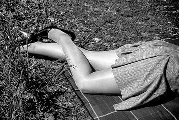 Hübsche Beine in Nylons (Monochrom) von Norbert Sülzner