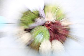 """Pflanzen """" zoom & twist"""" von Natalie van der Hoeven"""