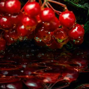 sparkling drops  - Rote Grütze