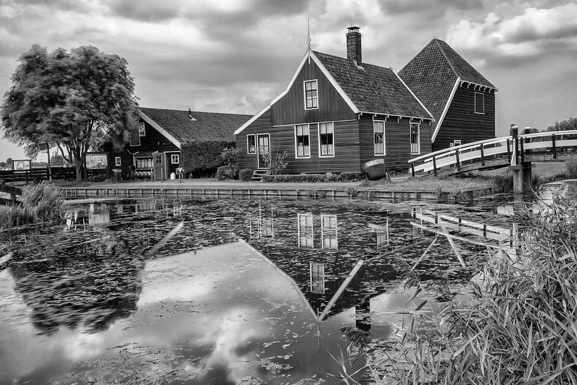 Catharina Hoeve - De kaasboerderij van Kevin Nugter
