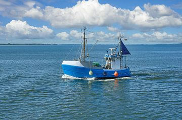 Fischkutter auf dem Schaproder Bodden von Peter Eckert
