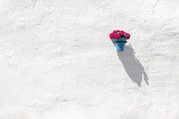 Blauwe bloempot op muur van Antwan Janssen