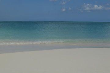 Strand van Ingrid Wiersma