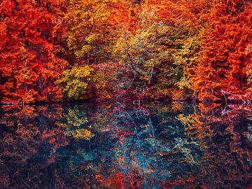 Herbst Wald mit See in Kunst Farben von Mustafa Kurnaz