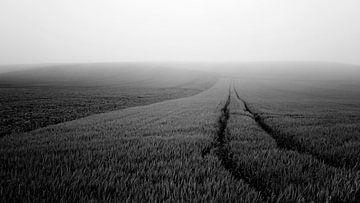 Minimalistisch landschap in Frankrijk (zwartwit) von Tjitte Jan Hogeterp