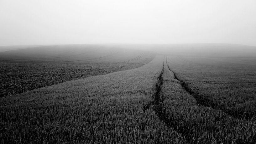 Minimalistisch landschap in Frankrijk (zwartwit) van Tjitte Jan Hogeterp