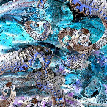 Digitale Arbeit mit Seepferdchen von Ton Kuijpers