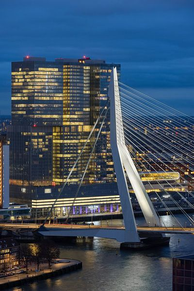 Erasmusbrug in de avond van Prachtig Rotterdam