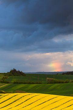 Regenboog wolk boven glooiend landschap van Mark Scheper