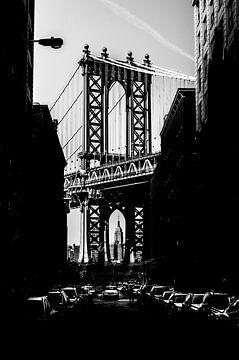 L'état d'esprit de New York sur Lex Scholten