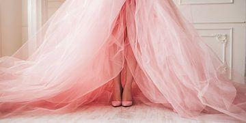 Une robe de bal sur David Potter