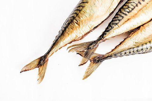Abstracte foto van gestoomde makrelen staarten