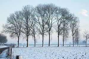 winters sfeer landschap