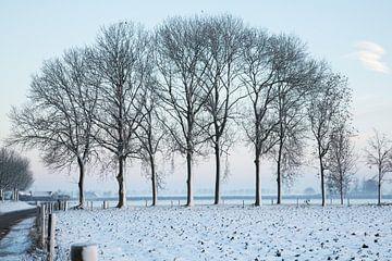 winters sfeer landschap van Marijke van Eijkeren