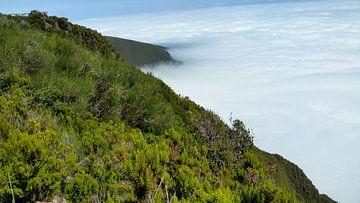 Hangabschnitt auf einem Berg mit Blick auf die Passatwolken auf Madeira von Hans-Heinrich Runge