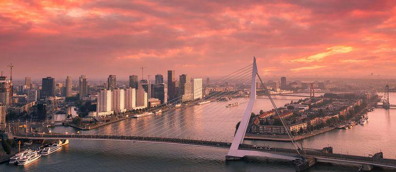 Rotterdam brennt von Ilya Korzelius