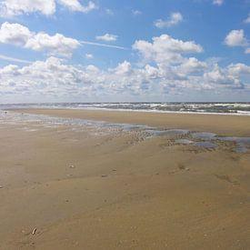 Pierenbad op het strand van Lotte Veldt