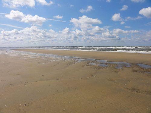 Pierenbad op het strand sur
