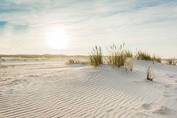 Nordsee Dünen von Ursula Reins