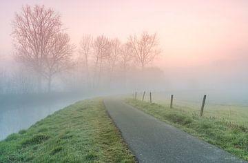 ijzige ochtend met mist die opstijgt langs een rivier van Marcel Derweduwen