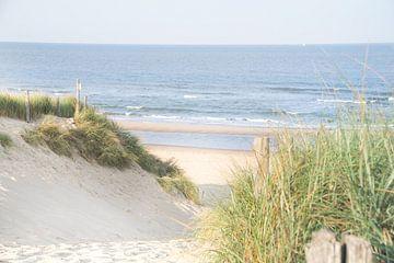 Strandaufgang in Callantsoog von Danny Tchi Photography